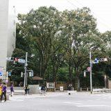 駒込駅の作業・打ち合わせができるカフェ7選!電源・WiFiが使えるカフェはどこ?